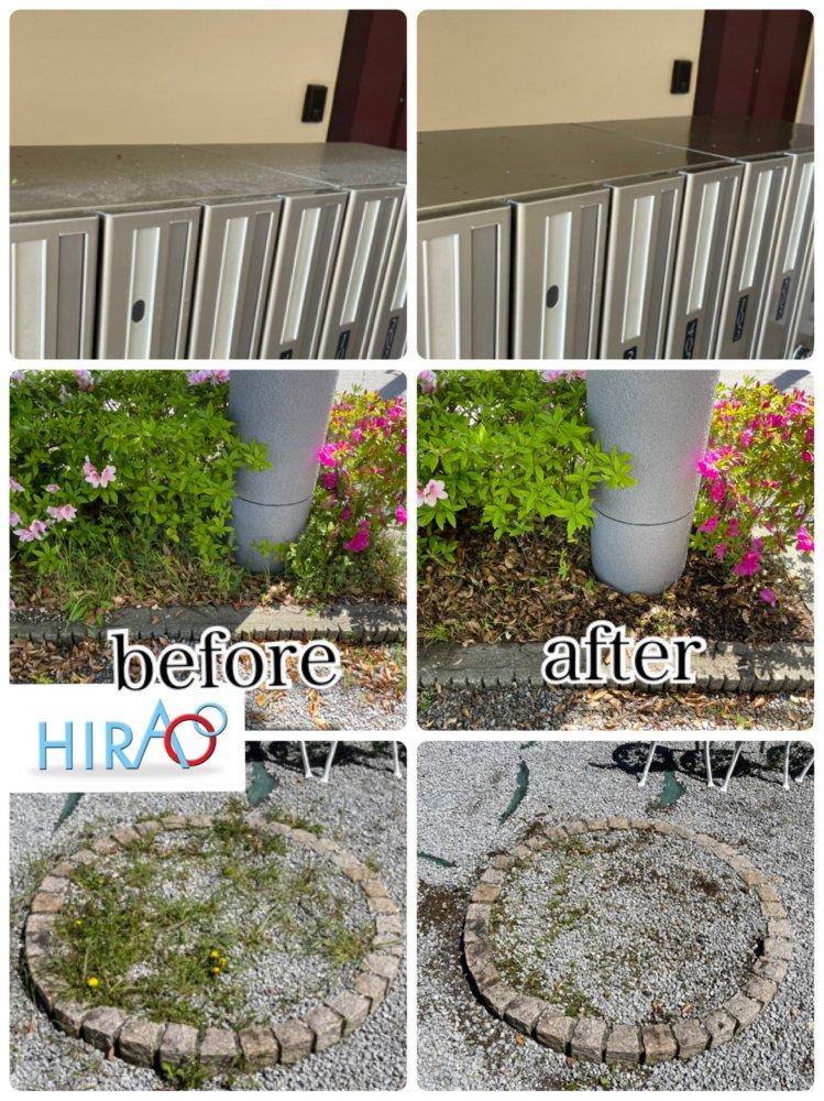 滋賀県にある集合住宅様にて、共用部分清掃、庭の雑草除去でお伺い致しました。
